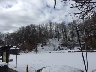 本格的な冬到来 ~イワクラ公園より~